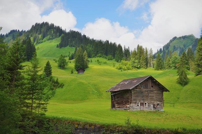 Eine Holzhütte inmitten von grünen Wiesen und Wäldern im Kleinwalsertal