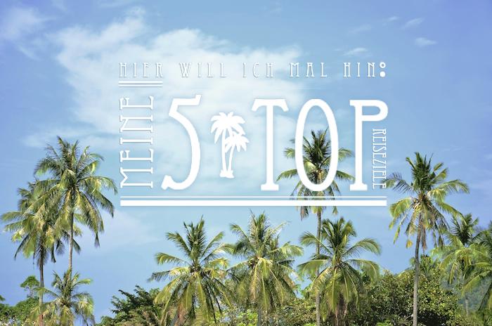 Schöne Palmen an einem der 5 Top Reiseziele