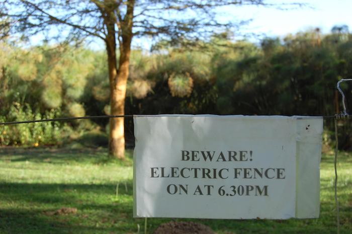Lächerlicher Zaun am Lake Naivasha in Kenia