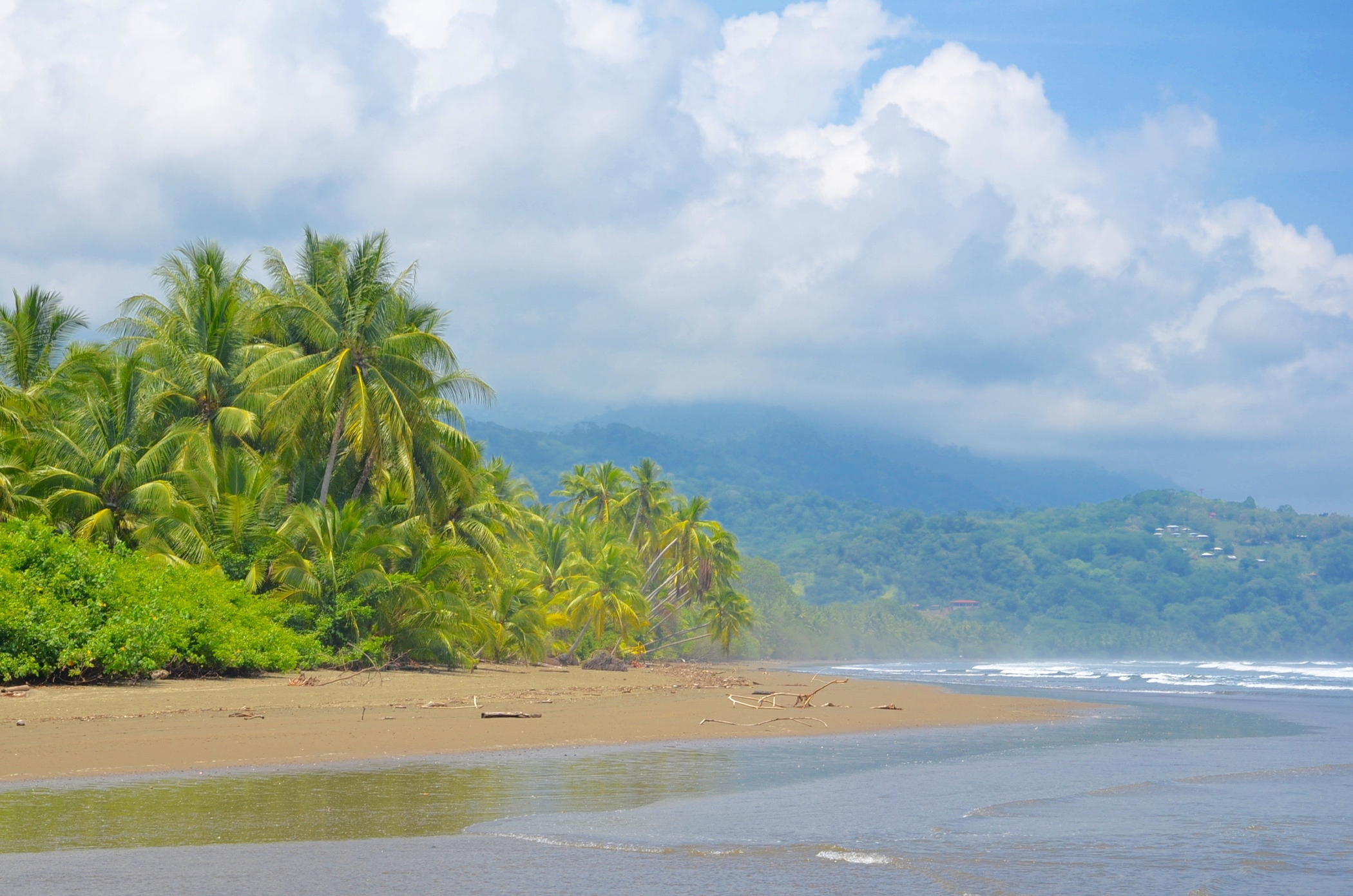 Liebeserklärung Ode an die Natur wie in Costa Rica