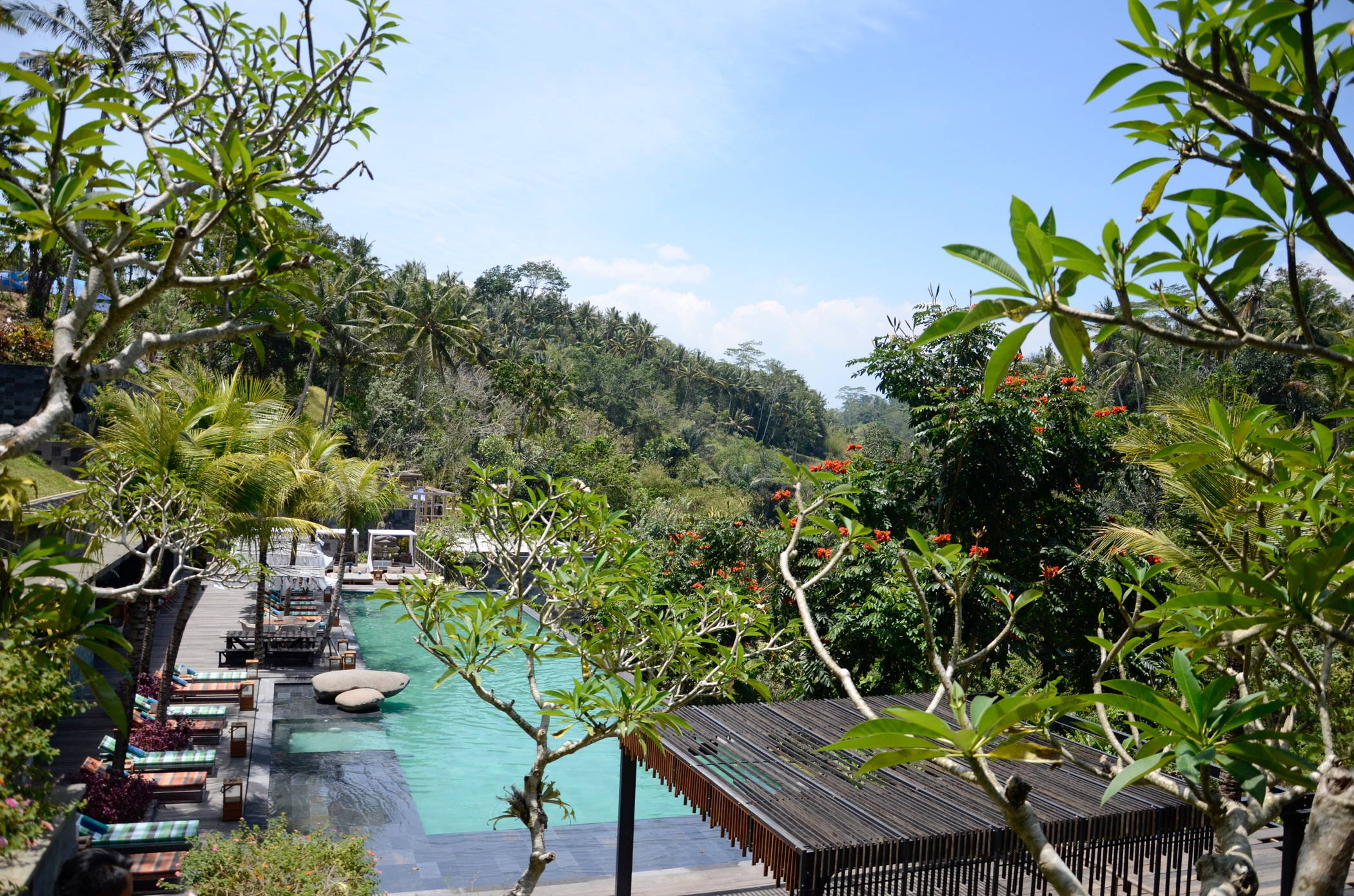 Pool im Ubud Hotel Chapung Se Bali