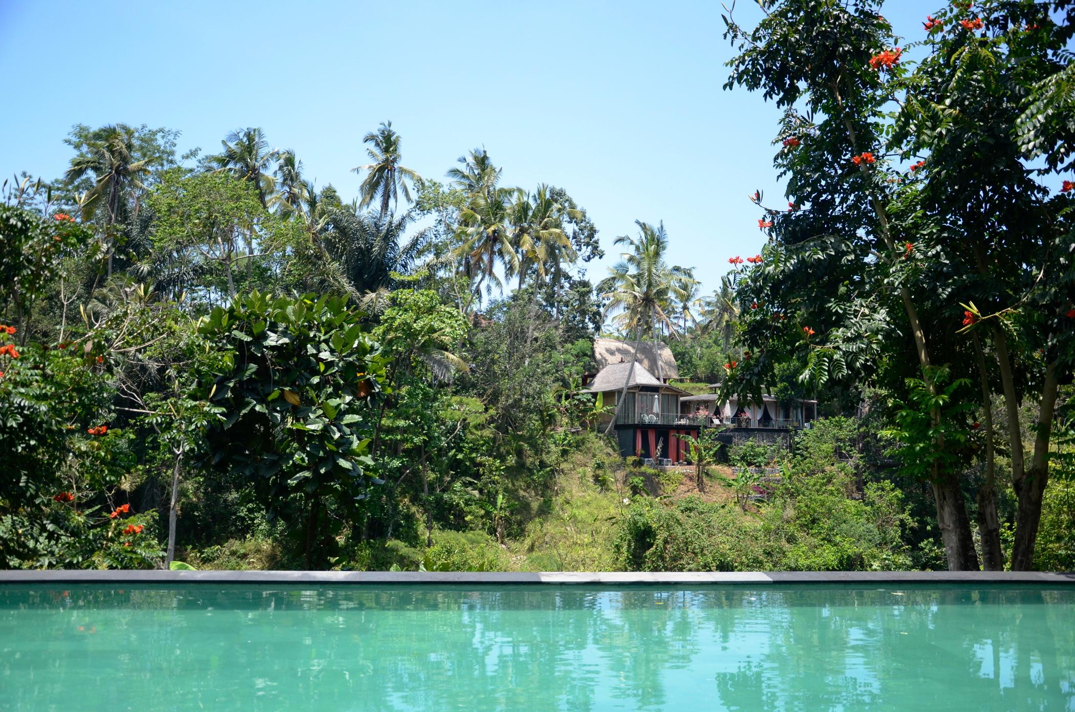 Infinity Pool at Ubud Hotel Chapung Se Bali