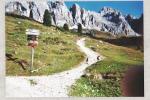 Südtirol Unplugged: Ein Digital Detox Selbstversuch auf 2.040 Metern Höhe | Teil 3