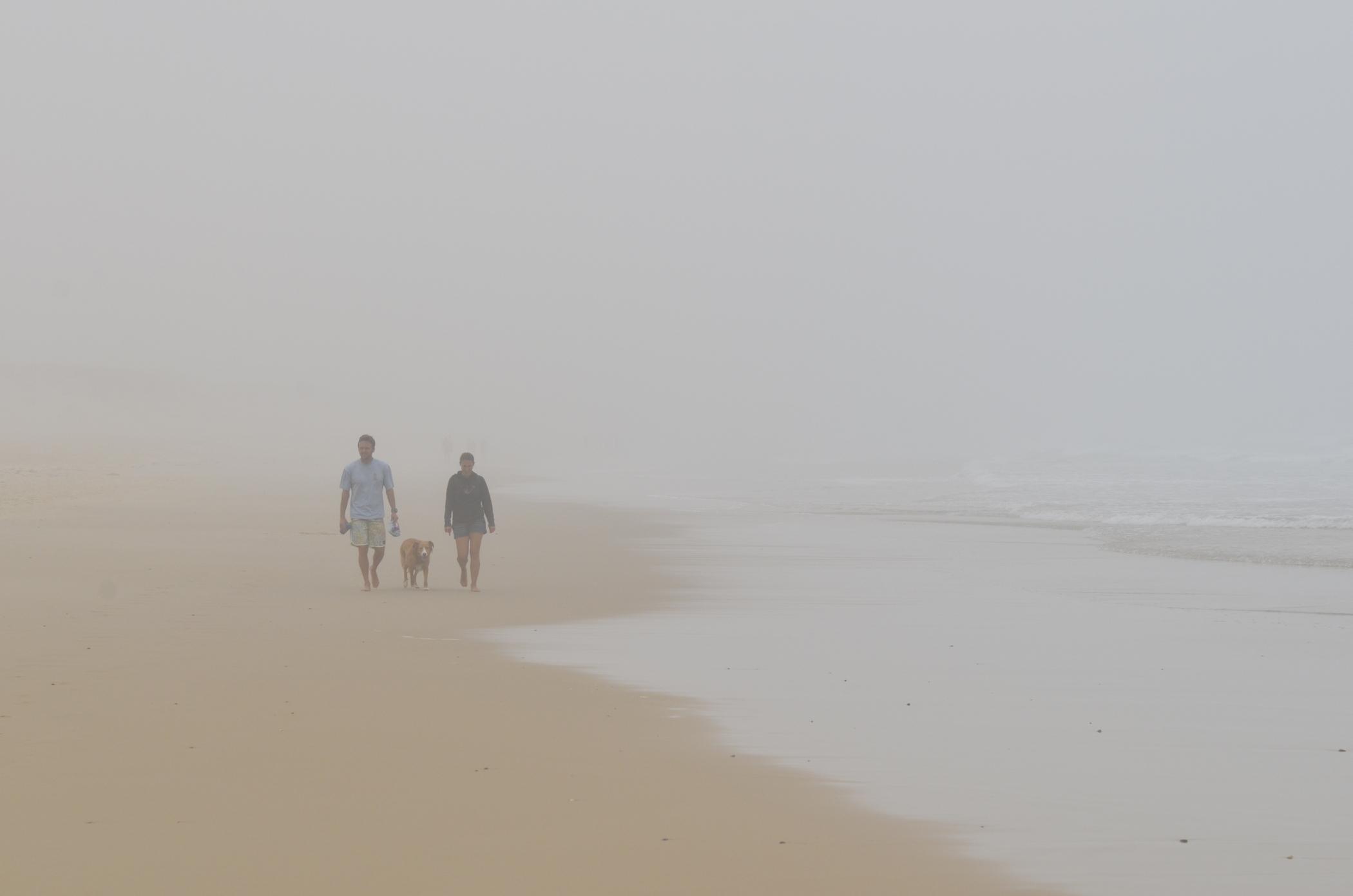 Surfguiding Peniche Hund am Strand